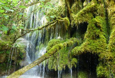 cascade sur la Siagne