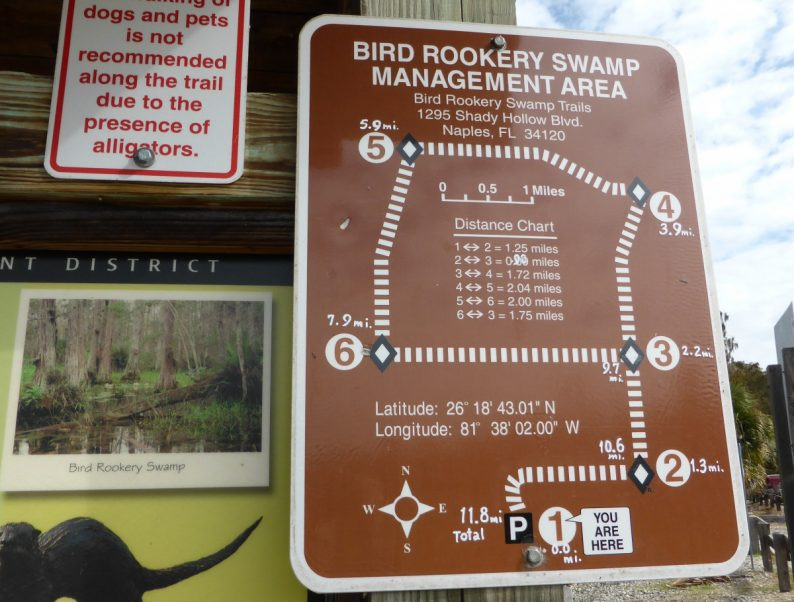 Bird Rookery Swamp Trail Floride