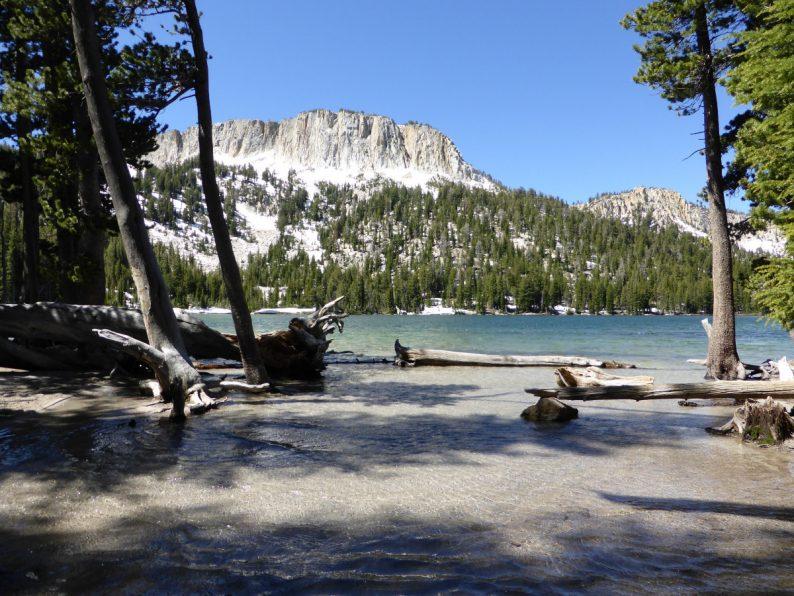 Mc Leod Lake Mammoth Lakes