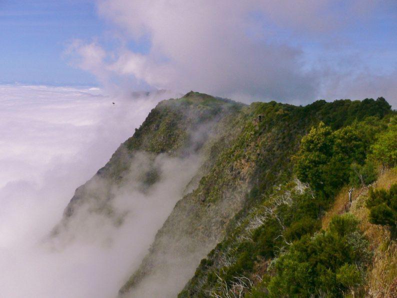 Nez-de-Boeuf - île de la Réunion