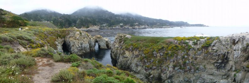 Point Lobos Natural Reserve