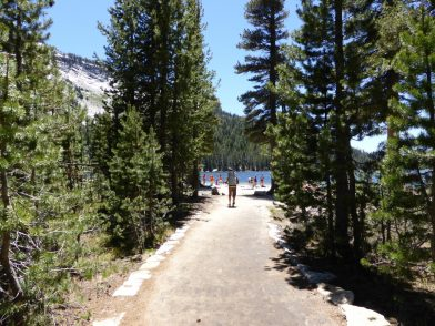 Tenaya Lake Yosemite Californie