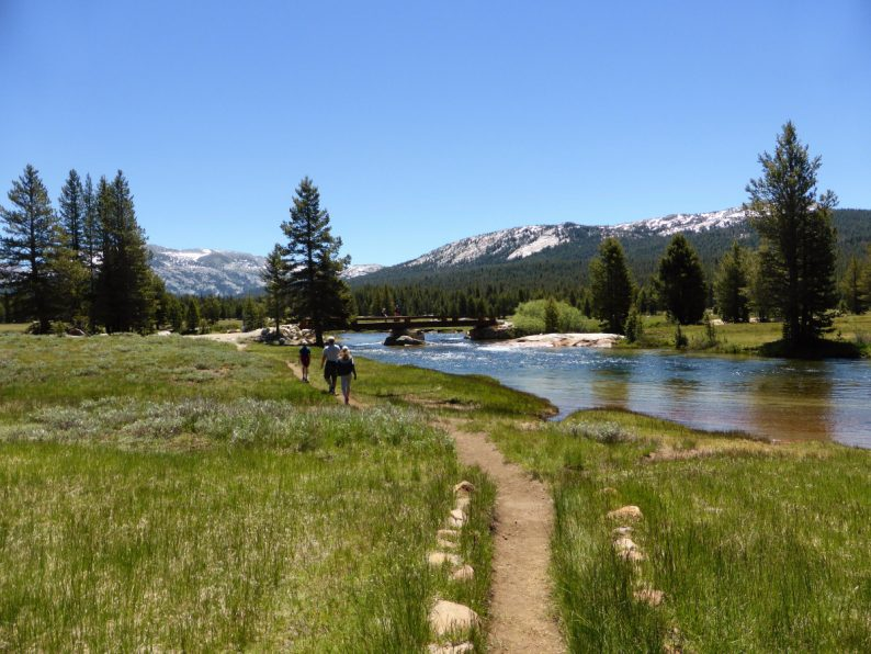 Tuolumne Meadows, Yosemite Californie