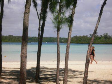 l'île aux cerfs- île Maurice