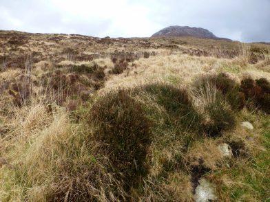 Diamond Hill, parc national du Connemara)