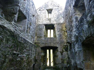 Muckross Abbey, parc National de Killarney