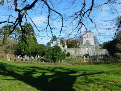 Muckross Abbey, parc National de Killarney