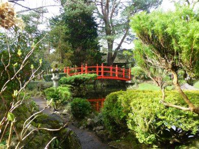 le jardin japonais, Kildare