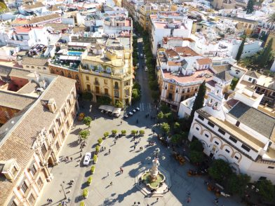 vue depuis la giralda, cathédrale de Séville