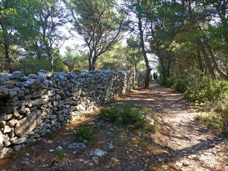 Mur de la peste, Vaucluse