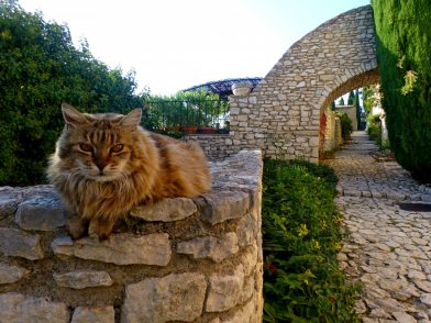 village de Joucas, Luberon