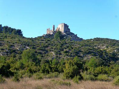 Le castellas de Roquemartine, Eyguières