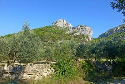 paysage du Vaucluse
