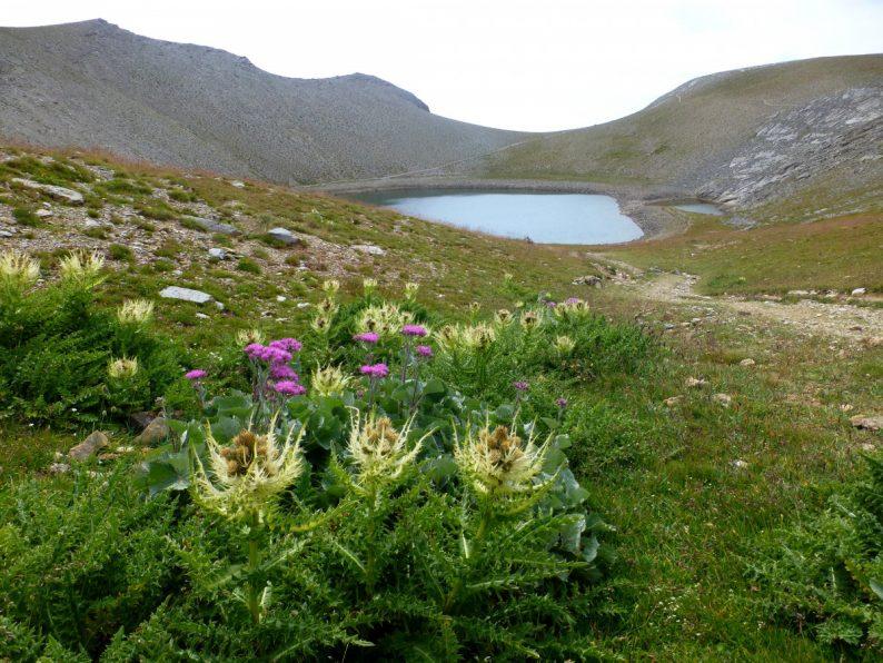 Rando lac d'Allos,Le lac des Garrets, parc National du Mercantour