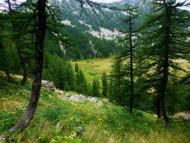 Rando lac d'Allos, parc National du Mercantour