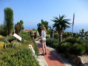 Le jardin exotique, Eze