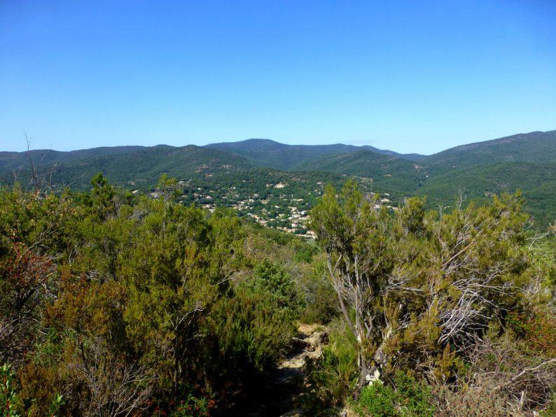 Sentier botanique, Collobrières