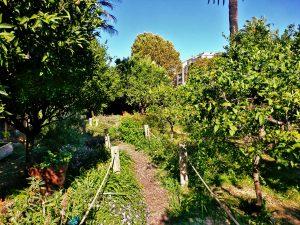 Le jardin du Palais Carnolès, Menton