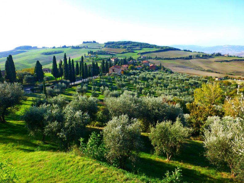 Vue sur la campagne toscane depuis Monticchiello